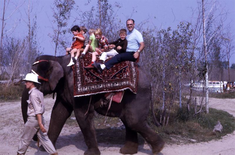 Tours à dos d'éléphant