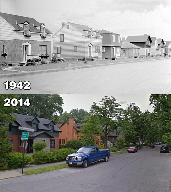 Rues des Marronniers 1942vs2014. Les maisons sont les mêmes avec plusieurs changements apportés.
