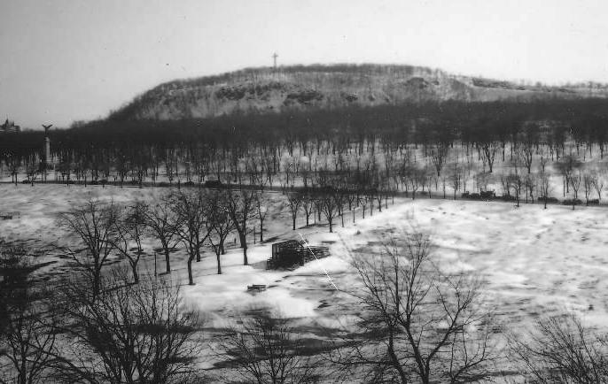 Le mont Royal et le parc du Mont-Royal vus du parc Jeanne-Mance